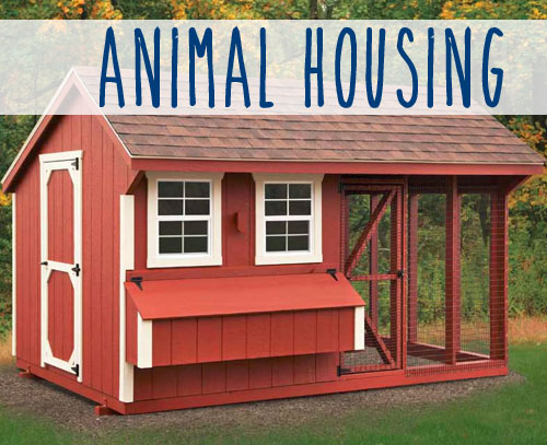 Raising Chickens? We Have Chicken Coops!