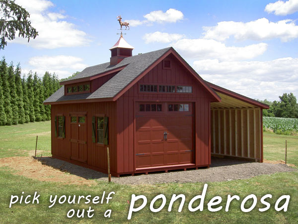 Pick Yourself Out a Ponderosa!