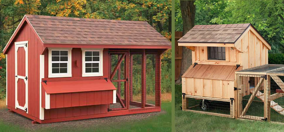 Chicken Coops Amp Hen Houses